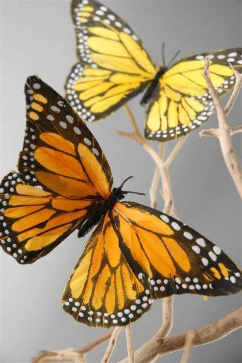 Decorative Monarch Butterflies   6 Pk