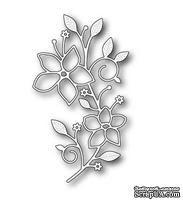 Нож от Memory box -  DIES- Vignette Floral Branch - ScrapUA.com