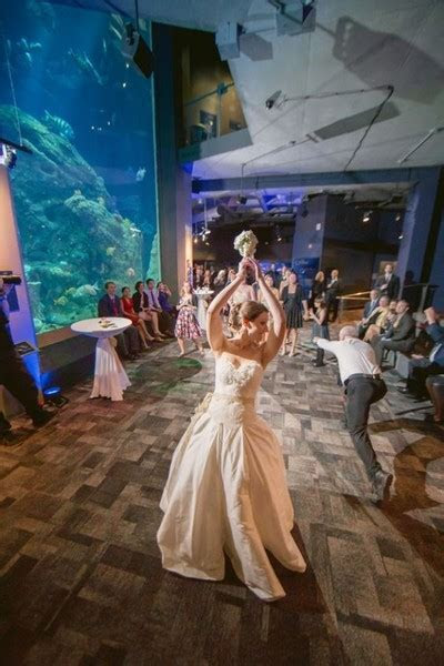 South Carolina Aquarium   Charleston, SC Wedding Venue