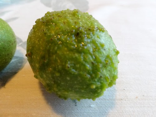 Pickelige grüne Walnuss