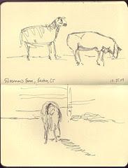 At Silverman's Farm 1