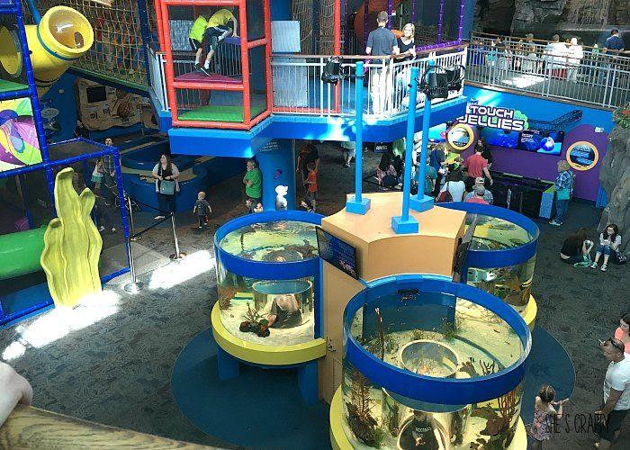 what to do in gatlinburg, family activities, aquarium of the smokies