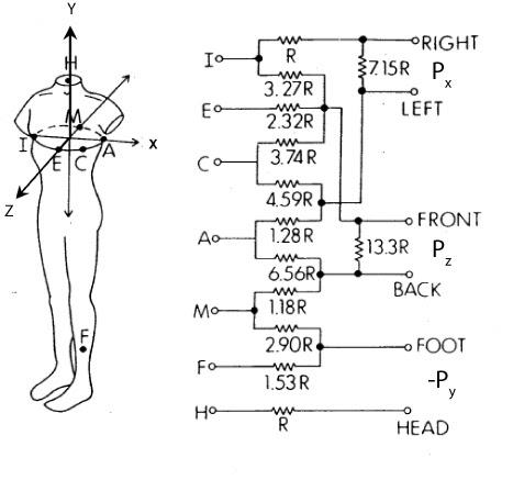 Ecg Measurement And Analysis