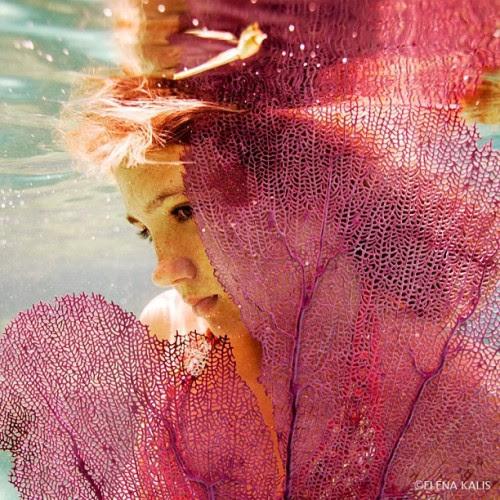Coral - @elenakalis- #webstagram
