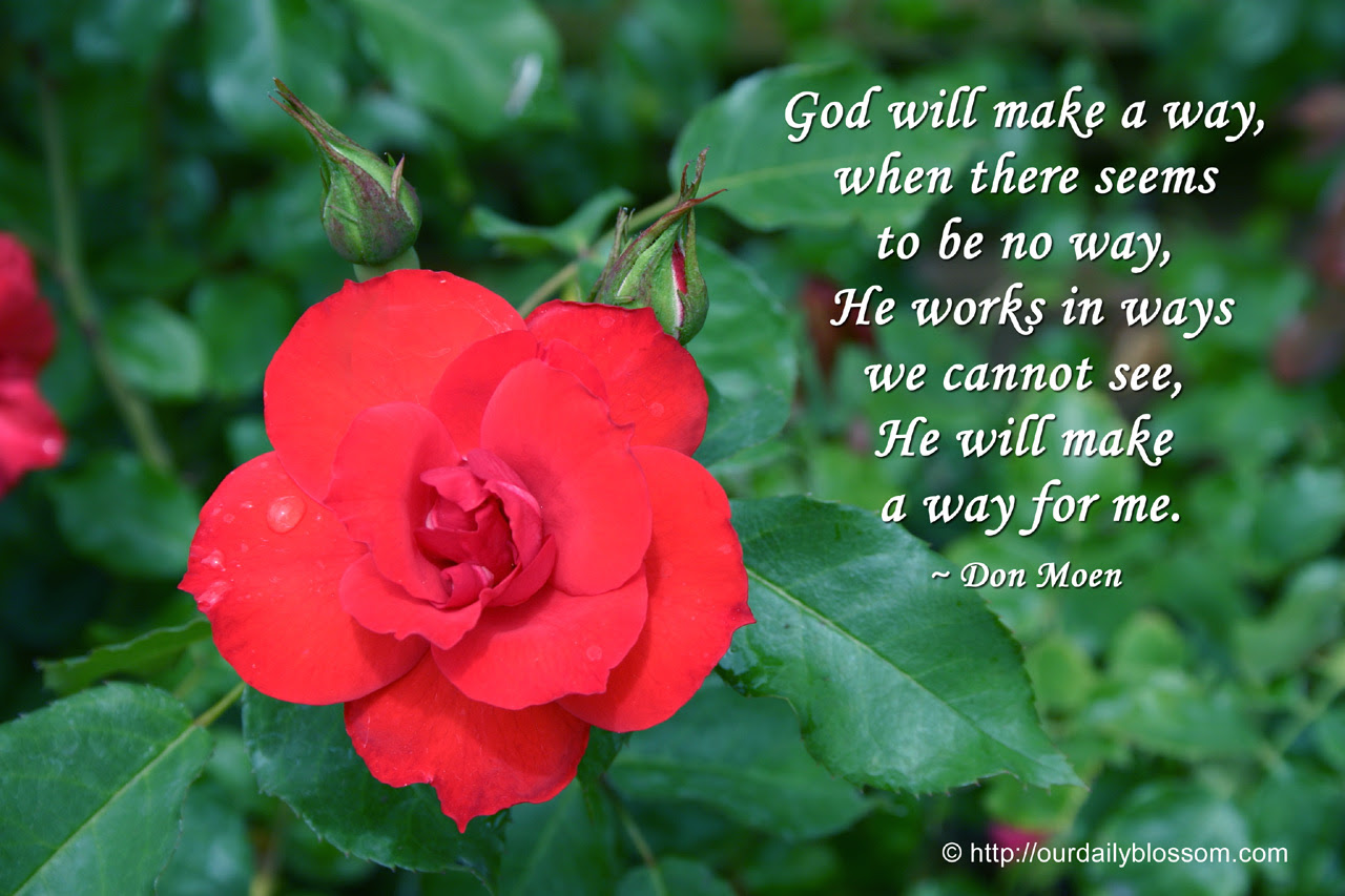 Spiritual Quote Don Moen Our Daily Blossom