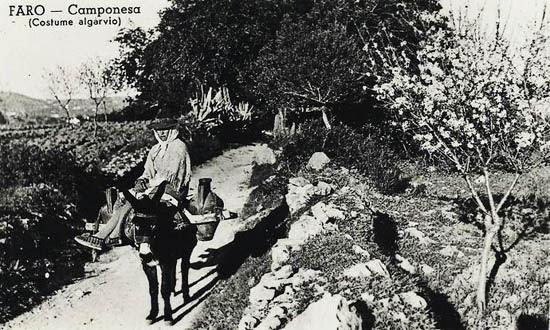 Camponesa Faro