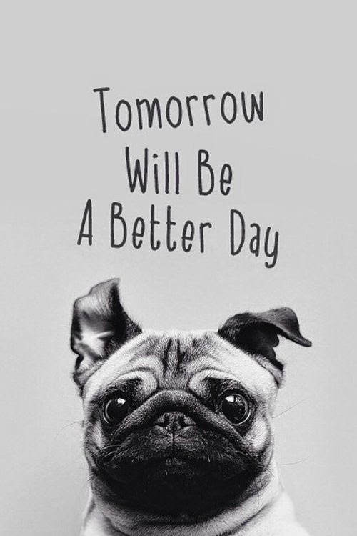 Tomorrow Will Be A Better Day Pictures Photos And Images For