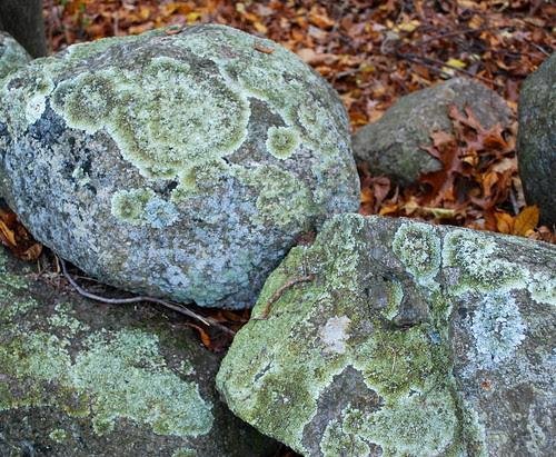 Nov 09 mossy rocks1