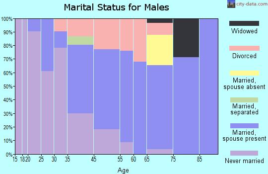 Shelburne Falls marital status for males