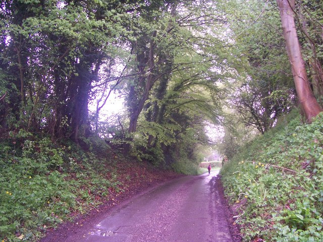 File:Road by Vann Farm, Empshott - geograph.org.uk - 165918.jpg