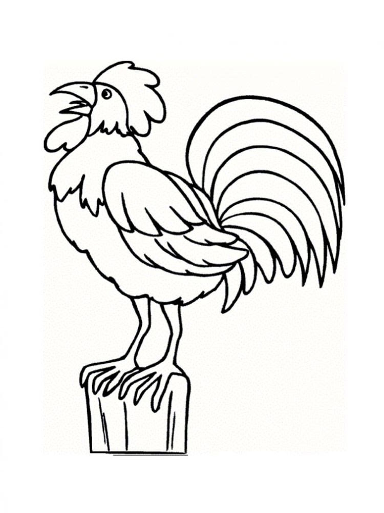 Year Of The Rooster Coloring Page A K Binfo