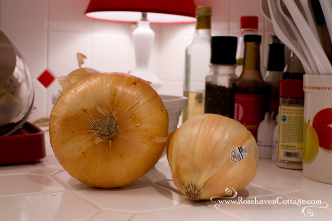 A mongo Vidalia onion all the way from Georgia