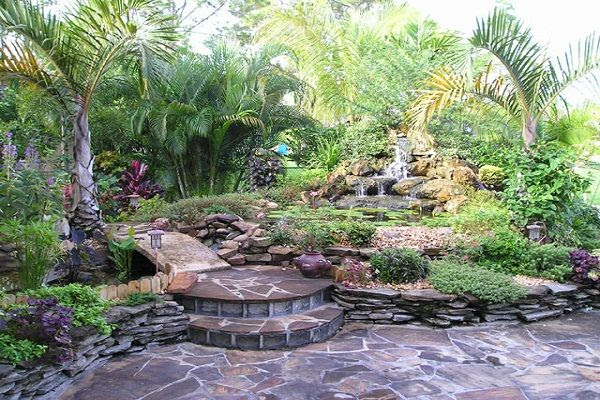 Back Yard Desert Landscaping Ideas