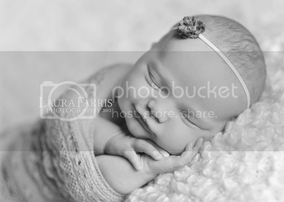 boise newborn baby photographers