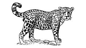Significado Tatuaje Jaguar 1 Tatuarteorg