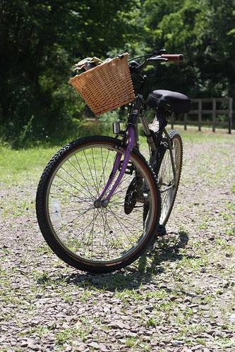 9 mama's bike