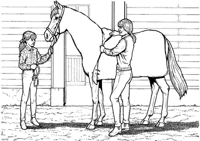 Ausmalbilder Pferde-4 | Ausmalbilder Kostenlos
