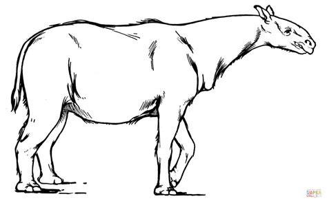 images  color animals extinct  pinterest