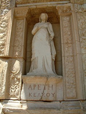 Cnota, Efez