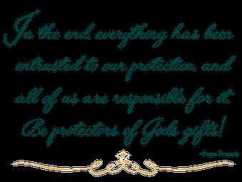 Pope Francis On Stewardship St Joan Of Arc Catholic Church