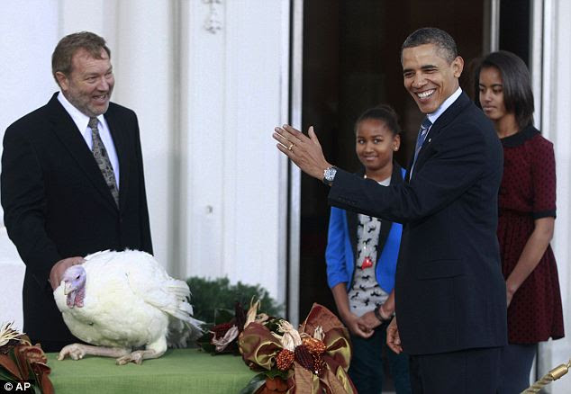 Not to be gobbled up: With a wave of his hand President Barack Obama ceremonially pardoned Liberty, a 19-week old, 45-pound turkey, on Wednesday morning