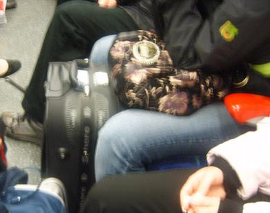 Crown Jewel Bag