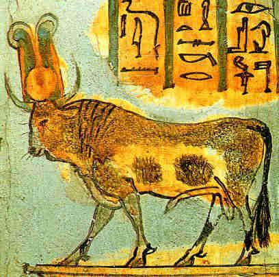 http://www.landofpyramids.org/images/apis-bull.jpg