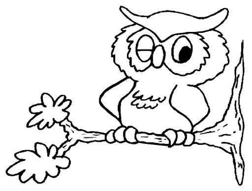Baykuş Boyama Okul öncesi Bahattinteymuriom