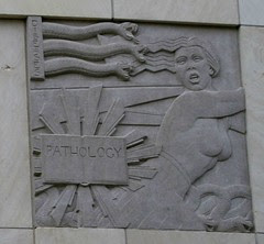 roy and lillie cullen building, baylor college of medicine pathology frieze
