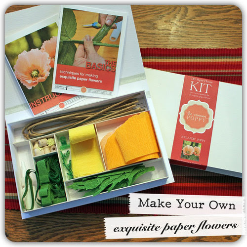 icelandic-poppies-diy-kit