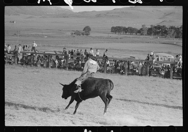 Image, Source: digital file from intermediary roll film of original neg.