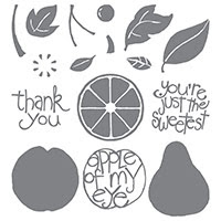 Apple of My Eye Photopolymer Stamp Set by Stampin' Up!