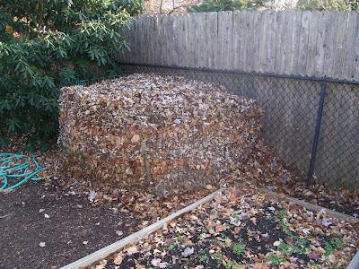 Compost Bin Picture