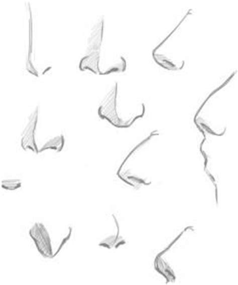 draw noses step  drawing pinterest
