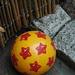 Zane's Ball