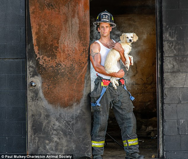 Tanksome: Some firefighters are topless, others aren't, but bulging biceps appear in every shot