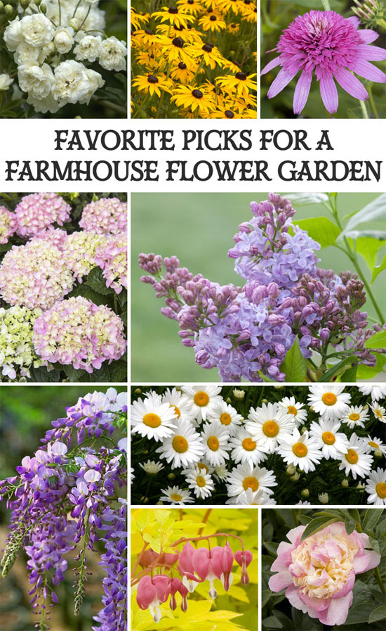 Hello Farm House Spring flower-garden-picks Its spring gather the tools and fresh plants and make your garden look pretty