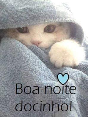 Envie Boa Noite Para O Seu Amor No Facebook E Whatsapp