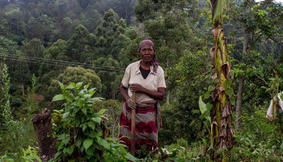 Una mujer labra la tierra en Ntenga, Tanzania.