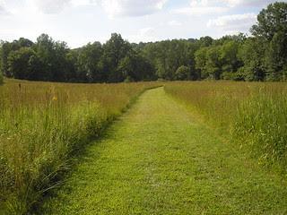 Willow Wood Arboretum! 11