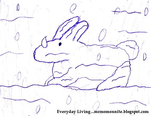 drawing of a bunny