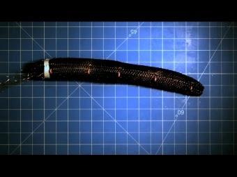Кадр из видеопрезентации MIT