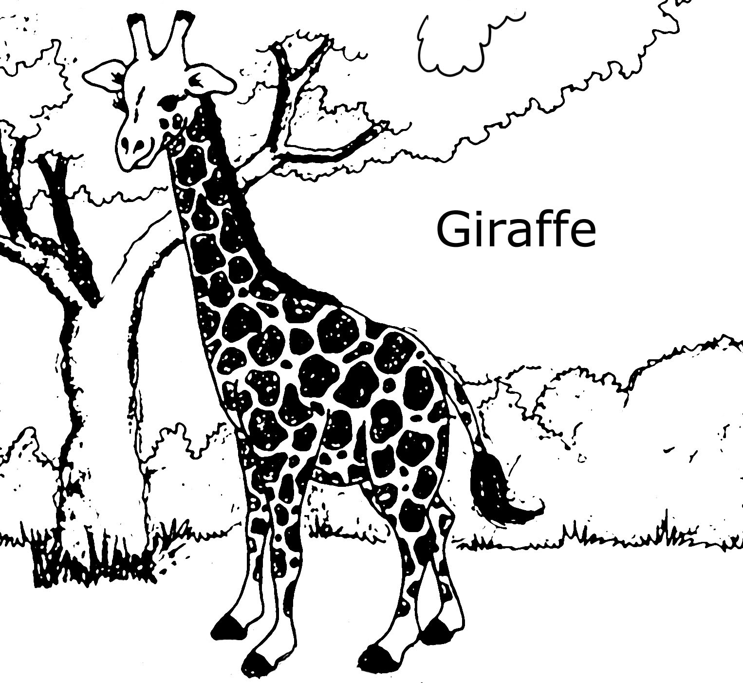 Giraffes coloring pages to download and print for free