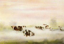 koeien mist