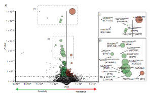A volcano plot representation of MANOVA results showing the magnitude and significance of all drug-gene associations. Each circle represents a single drug-gene interaction and the size is proportional to the number of mutant cell lines screened.