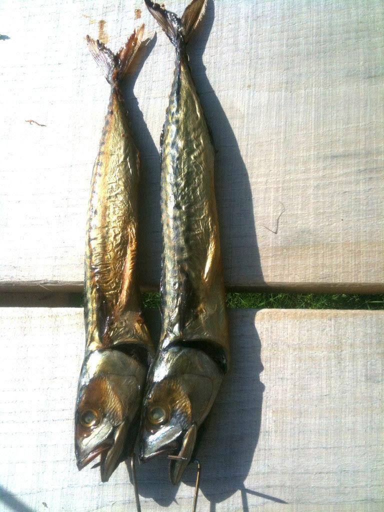 smoking mackerel