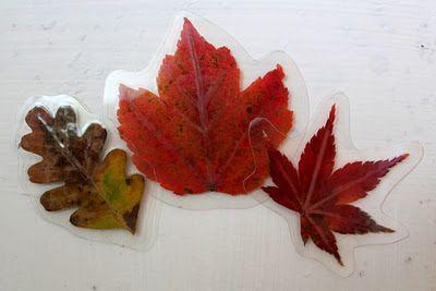 Laminated leaf magnets...