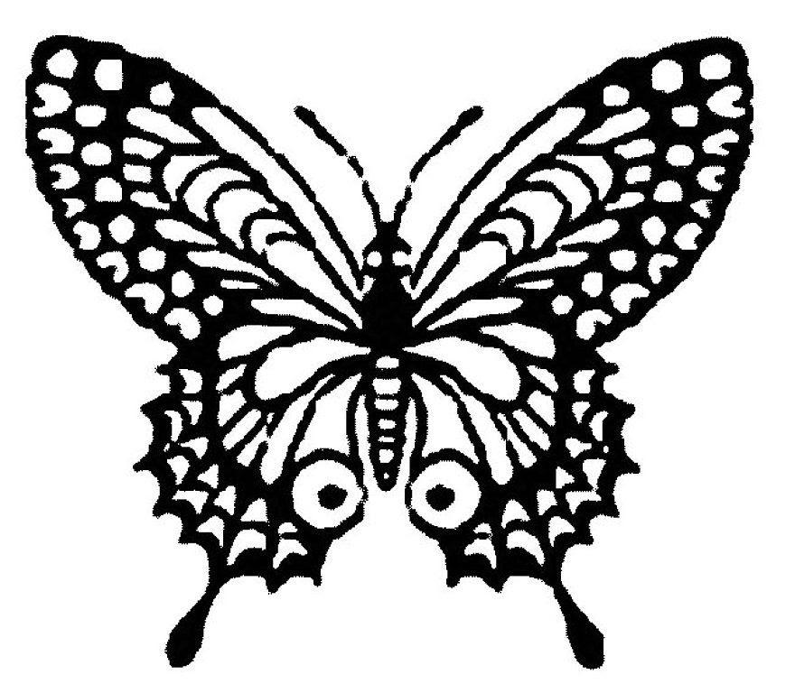 Dibujos Para Colorear Mariposa Monarca