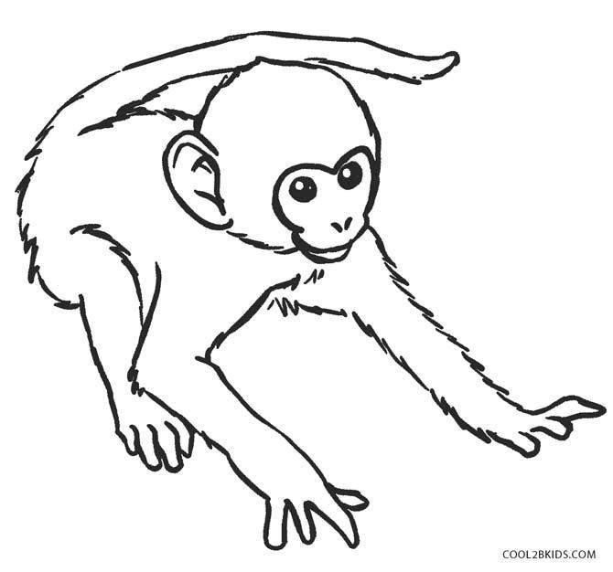 Best 25 Monkey Drawing Ideas On Pinterest Black Monkey Pro Monkey Drawing Cute And Pencil