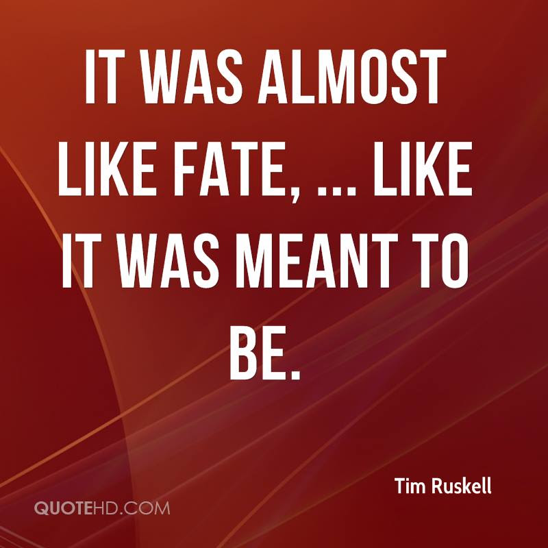 Tim Ruskell Quotes Quotehd